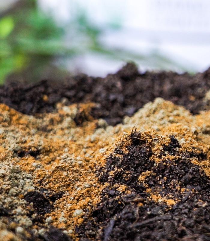 Living Soils